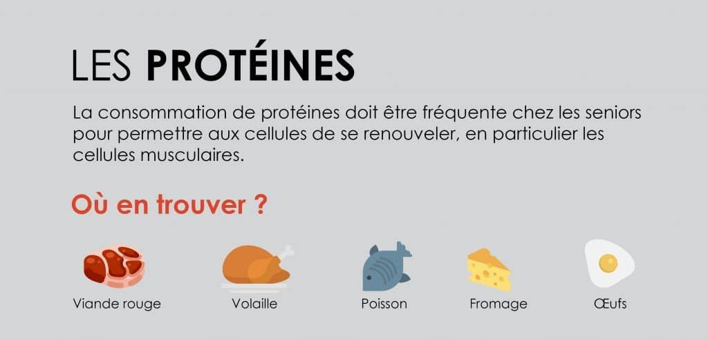 Où trouver des protéines ?