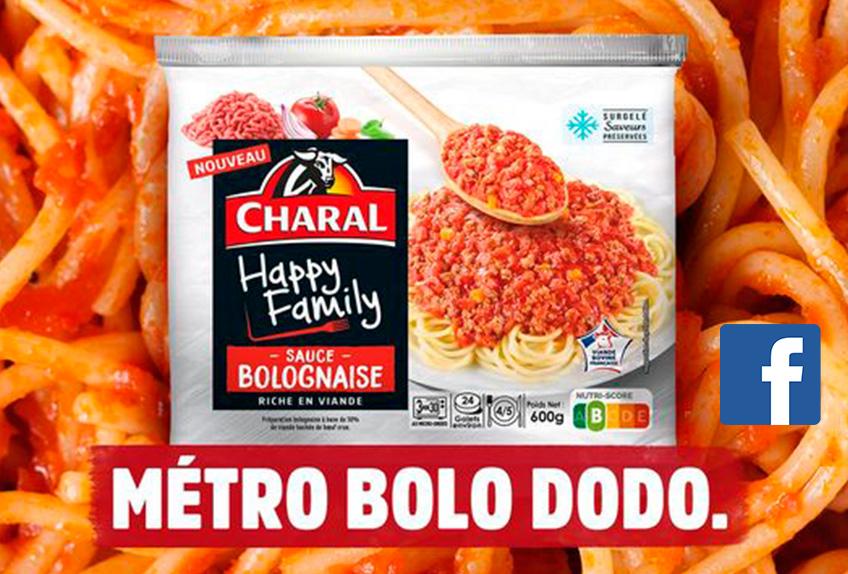 Metro Bolo Dodo